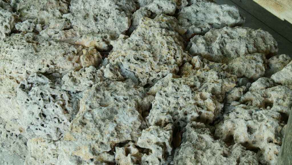 Limestone as a foundation to invest in Miami